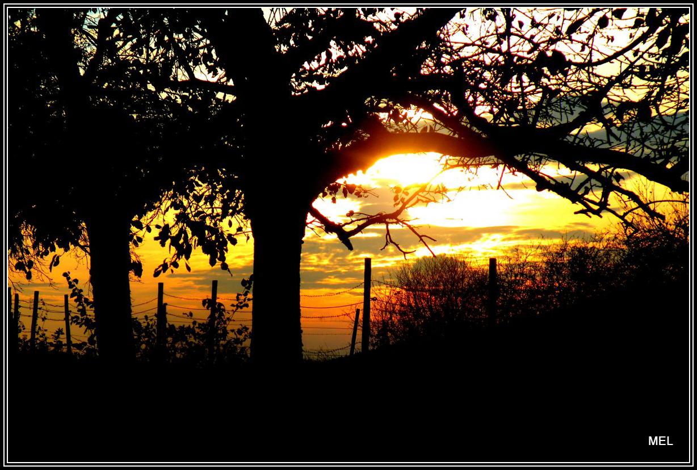 Sonnenuntergang Bei Schengen