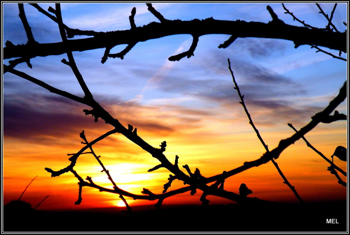 Sonnenuntergan Saargau Großdruck