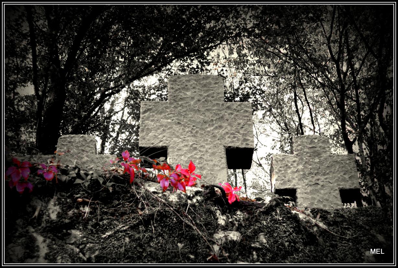 Kreuze auf dem Ehrenfriedhof in Besch