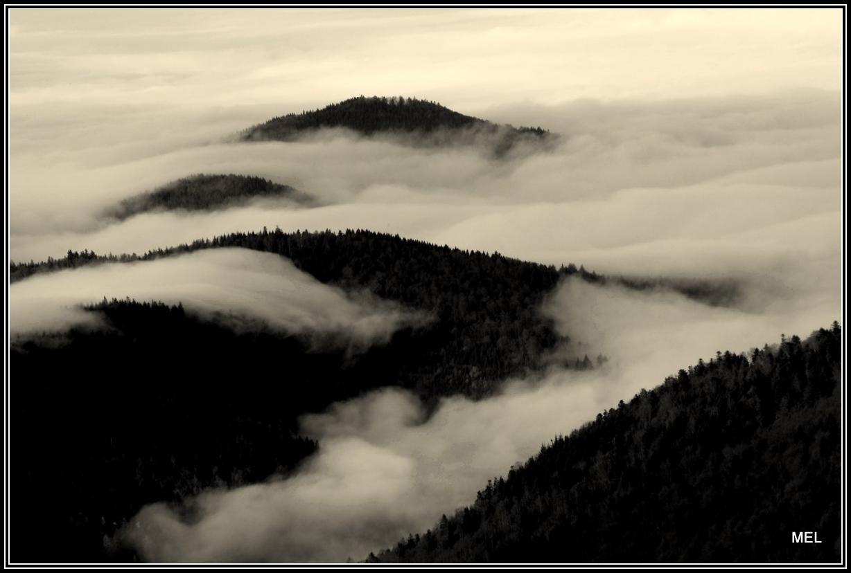 Nebelberge
